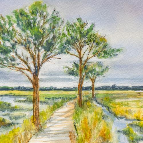 The Broad Walk