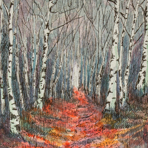 Silver Birches Thumbnail